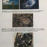 Bericht Okinawa, Teil 3