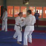 Danprüfung Kihon Kumite