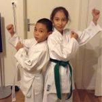 Starke Karatekas
