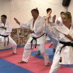 Lehrgang mit Karate-Legende Roland Heimgartner