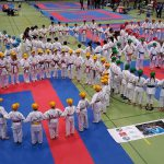 2017 Swiss Karate League Sursee